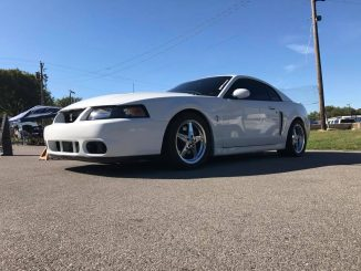 One nice Terminator Cobra sitting on Race Star Wheels from this past weekends NM...
