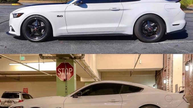 A couple of sweet S550 Mustangs rolling on Race Stars! Owners: @3beeps5.0 and @j...